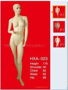 High Quality Fiberglass Mannequins Torso 1024