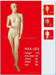 High Quality Fiberglass Mannequins Torso 1024 pictures & photos