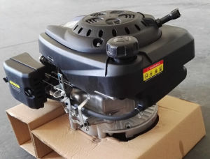 6.5 HP Vertical Shaft Lawn Mower Engine (TV200) pictures & photos