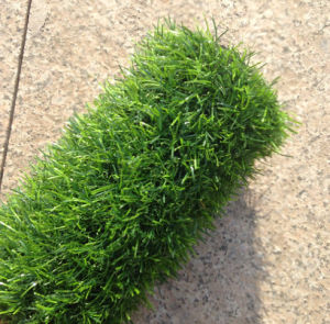 25mm Landscaping Artificial Turf pictures & photos
