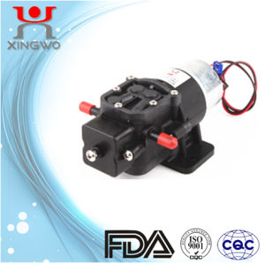 DC Electric Small Diaphragm Pump 0.8L/Min (DP005A1) for Water Dispenser