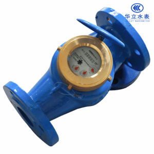 Vane Wheel Cold Water Meter (LXS-40E~LXS-50E) pictures & photos