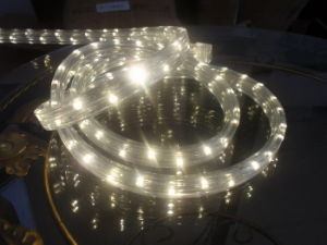 3 Wire Flat LED Rope Light pictures & photos