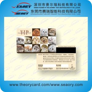 2015 High Quality PVC Hi-Co/Lo-Co Magnetic Strip Card pictures & photos