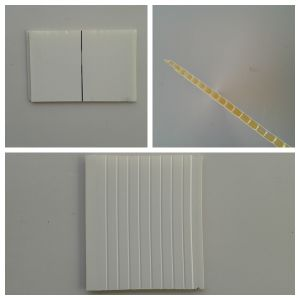 PVC Panel /Decoration Ceiling Indoors (BF-60-013)