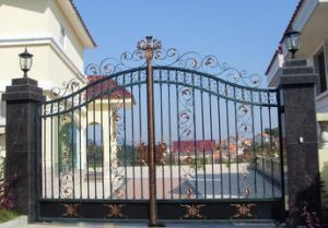 Powder Coating Wrought Iron Gate Designs Hot Sale pictures & photos