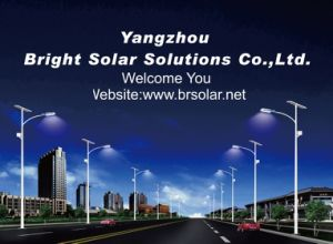 Solar Lights Manufacturer for 30W LED Light pictures & photos