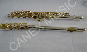 Flute / Nickel Silver Flute / Professional Flute 17 Holes (FL17KEG-S) pictures & photos