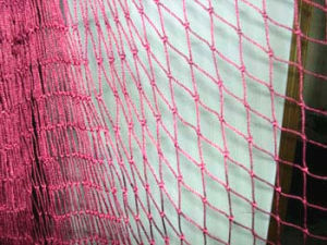 PA6 Nylon Fishing Net pictures & photos