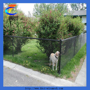 Top Quality Chain Link Fence (CTWM-5) pictures & photos