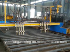 Chinese Hot Sale CNC Plasma Strip Metal Cutting Machine pictures & photos