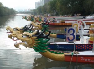 Paddle Dragon Boat Made with Fiberglass&Carbon Fiber