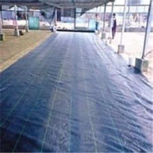 Factory Direactly 100g Woven Geotextile Weed Control Fabric pictures & photos