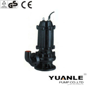 Electric Submersible Drainage Sewage Pump for Dirty Water (WQ)