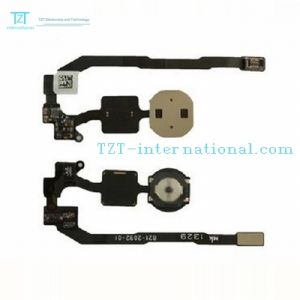 Mobile Phone Home Button Flex Cable for iPhone 5s pictures & photos