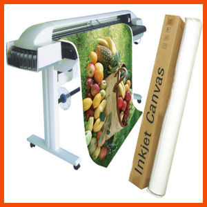 High Quality Large Format Digital Printing Textile White Canvas (SWC100) pictures & photos