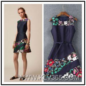 New Design Women Fashion Dress Clothes