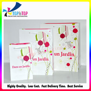 Simple Design Cosmetic Paper Bag pictures & photos