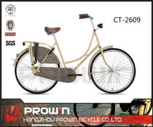 "28""Steel Frame City Bike (CT-2609)"