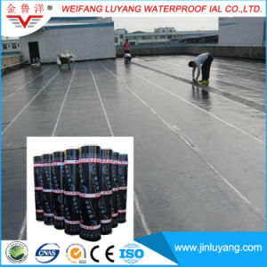 Cheap Price Waterproof Roofing Material, Sbs/APP Modifed Bitumen Waterproof Membrane