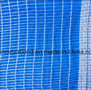 100% New Virgin HDPE Anti Hail Net pictures & photos