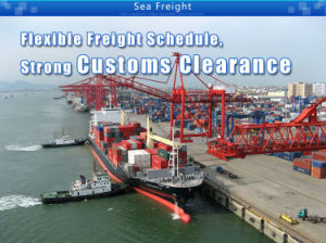 Shipping Container Service From Shenzhen China to Fremantle pictures & photos