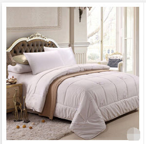 2015 Sales Well 100% White Goose Down Quilt (T126) pictures & photos