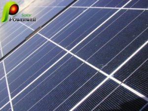 Polycrystal Photovoltaic Solar Module (BWSM-205P54)