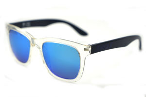 Fashion Sunglasses with Ce Certificate Xiamen Supplier pictures & photos