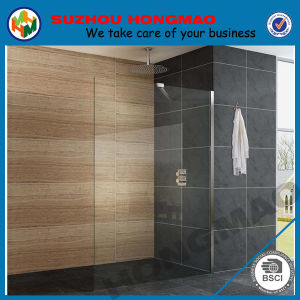 Shower Room Screens in Toilet