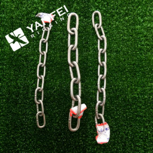 Stainless Steel Chain of DIN763 Chain pictures & photos