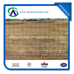 Factory Direct Sell Hog Panels/Feedlot Panels/Livestock Panels pictures & photos