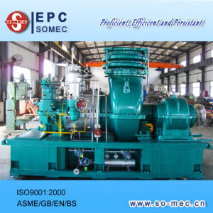 Palm Plantation Power Plant Steam Turbine Generator Supplier pictures & photos