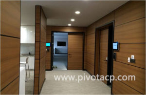 Wood Substitute ACP for Wall Decoration Better Than HPL