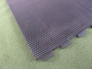 Animal Feeding Rubber Stable Mat Stock pictures & photos