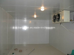 Food Storage Freezer Seafood Cold Room pictures & photos