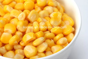 Sweet Corn in Can with High Quality pictures & photos