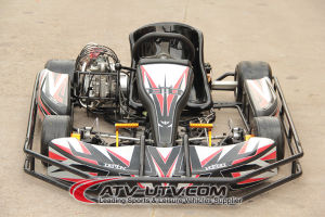 250cc Racing Go Kart pictures & photos