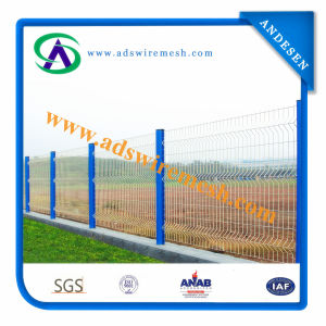 High Quality 6X6 Reinforcing Welded Wire Mesh Fence pictures & photos