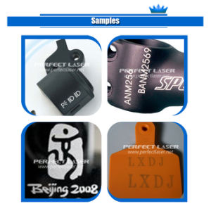 10W 30W 60W CO2 Laser Marking System with Metal Laser Device pictures & photos