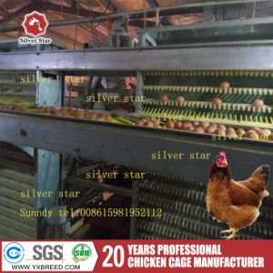 Farm Machinery Poultry Breeding System Wire Mesh Chicken Cage pictures & photos