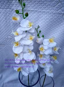 Artificial Flowers of Orchid 109cm Gu-D70089 pictures & photos