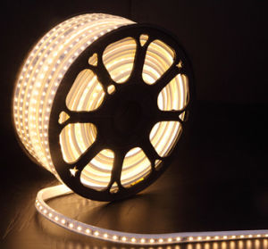 Ce Certificate 220V SMD2835/5050 LED Strip Light pictures & photos