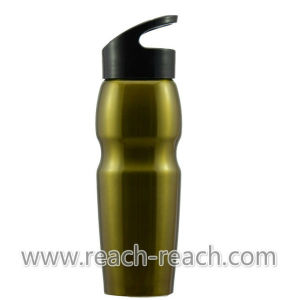 New Design 800ml Stainless Steel Water Bottle (R-9073) pictures & photos