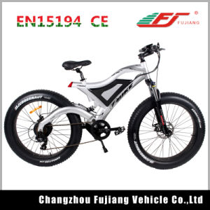Durable Fat Tyre E-Bike with Intergrated USB Charge Port pictures & photos