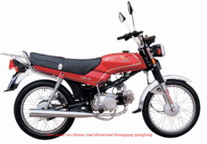 Motorcycle (110-D)