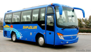 2016 Hot 8m 35 Seats Bus for Sale Low Price and High Quality pictures & photos