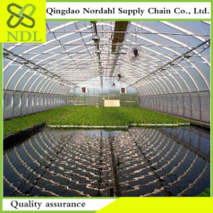 High Pervious to Light The Multi-Span Agriculture Glass Greenhouse pictures & photos