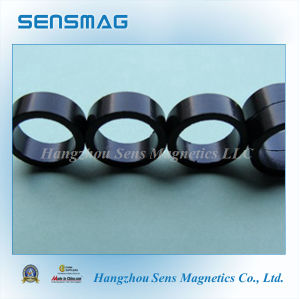 Permanent Bonded Neodymium NdFeB Magnet for Motor pictures & photos