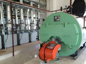 Packaged Oil / Gas Fired Steam Boiler pictures & photos